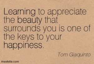 Quotation-Tom-Giaquinto-gratitude-learning-happiness-beauty-Meetville-Quotes-66779