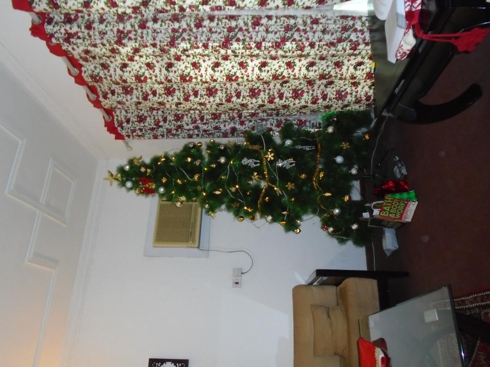 Christmas Tree 2016.JPG